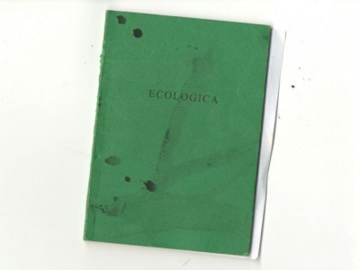 green notebook076