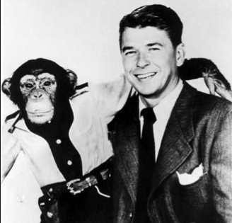 reagan_chimp